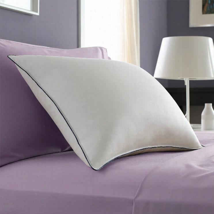 Pacific Coas Classic Firmm Pilloww