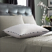 Pacific Coast Luxury Down Pillow