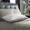 Pacific Coast Luxury Down Pillow