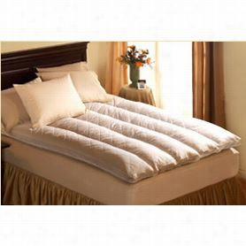 Pacific Coast 42648 Euro Rest King Size  Feather Be D In White