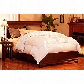 Pacific Coast 43816 Uperloft Twin Size Down Comforter In Whit E