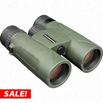 Orion Otter 10x42 Waterproof Roof Prism Binoculars