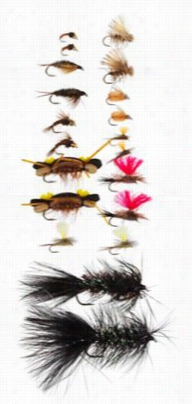 White River Fly Shop 20-piece Trout Starter Assortment With White River Fly Shop Riseform Triangle Foam Fly Box