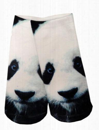 Kids & Adults Photo Priht Ankle Socks - Panda