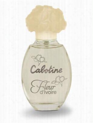 Cabotine Fleur D�ivoire