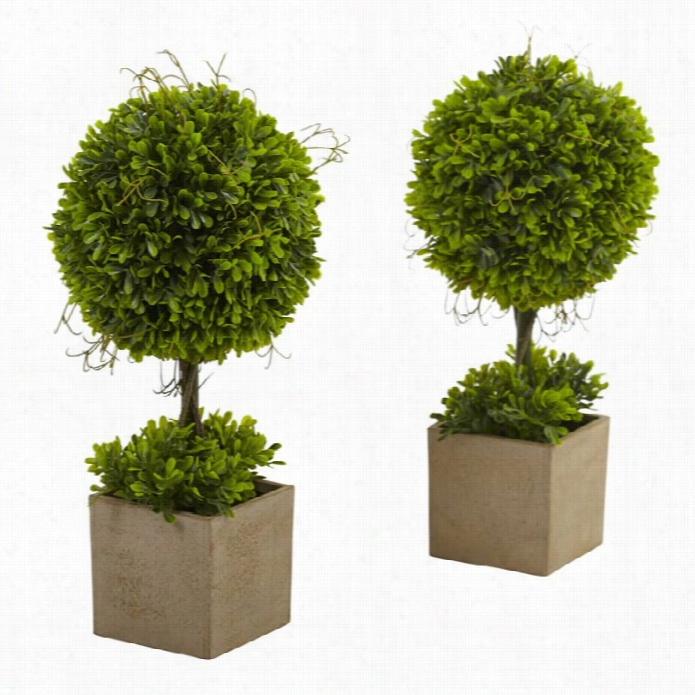 Nearly Natural Boxwood Ornamental  Iwth Planter (set Of 2)