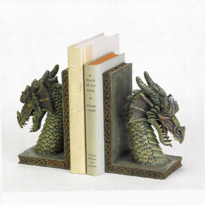 Zingz And Thingz Fierce Dragon Bookneds