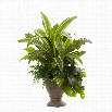Nearly Natural 25 Mixed Yucca Marginatum Pothos Bracken with Planter