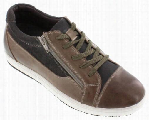 Calto -  G3609 - 2.4 I Nches Taller (grey/brown)