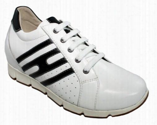 Toto - W1560 - 2.6 Invhees Tallre (white) -  Womne