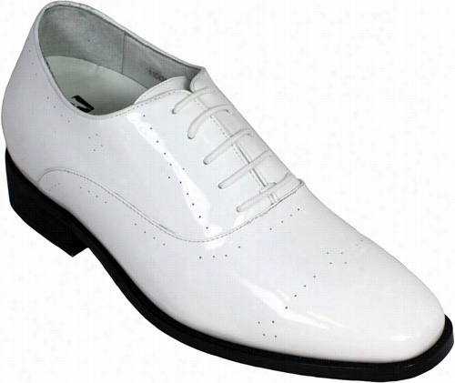 Toto-  X02182 - 2.8  Inc Ehs Taler (white Patent Leather)