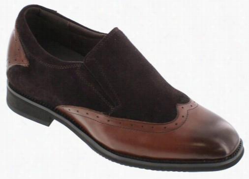Toto - X33513 - 3 Inches Taller (dark  Brown) - Lightweight