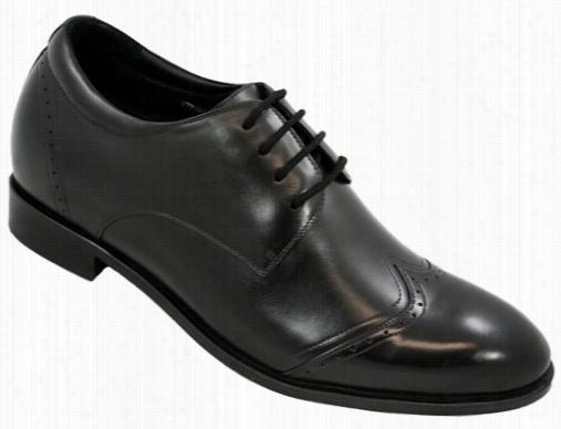 Toto - X70201 - 2.6 Inchws Taller (black) - Leathre Bottom